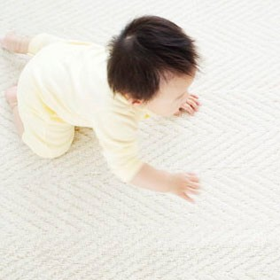 Crawling Stage